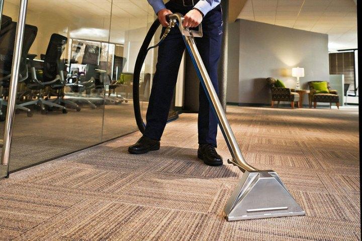 Làm sạch thảm và đồ dùng của thú cưng