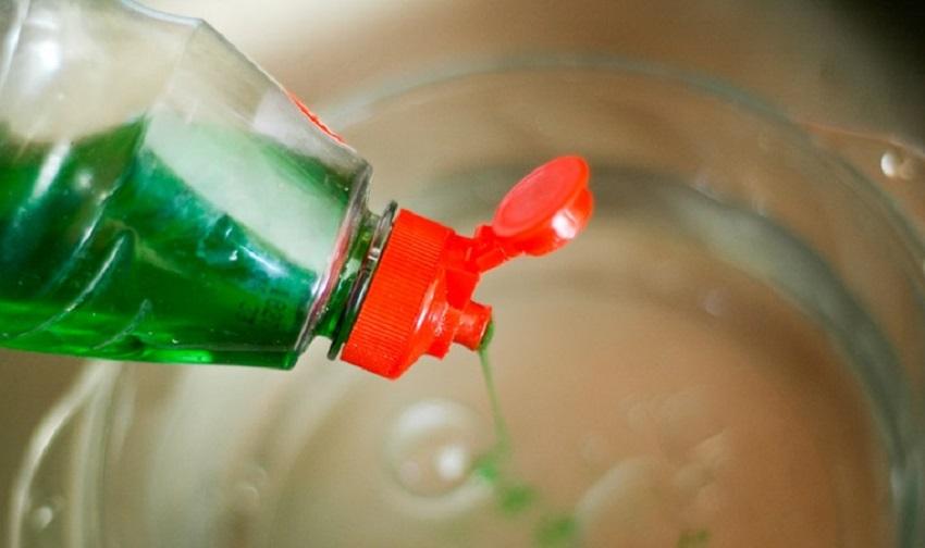 Sử dụng nước rửa chén phòng bọ chét