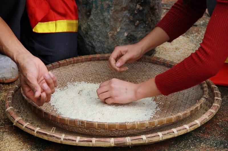 Cách giữ gạo không bị mọt