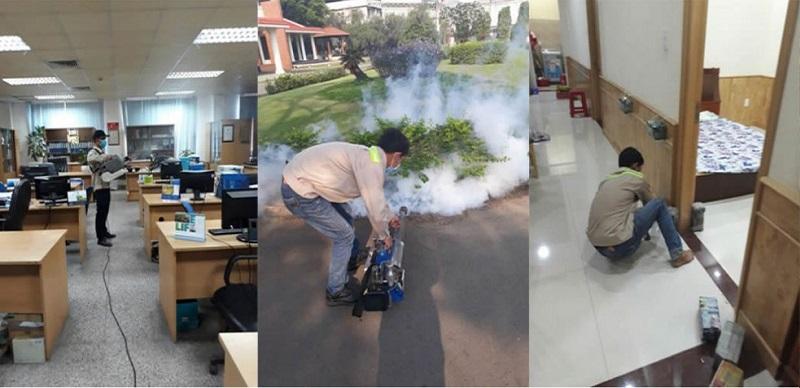 Công ty diệt mối quận 4 Đại Việt Pest Control