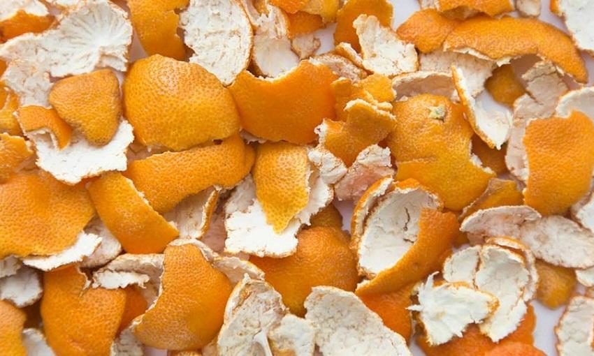 Ruồi vàng sợ mùi vỏ cam